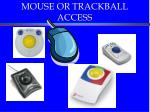 mouse or trackball access