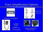 voice amplification options