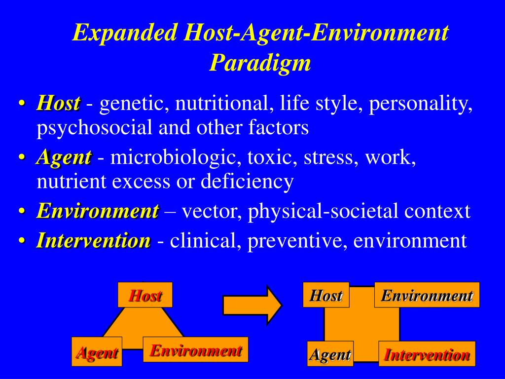 Expanded Host-Agent-Environment Paradigm