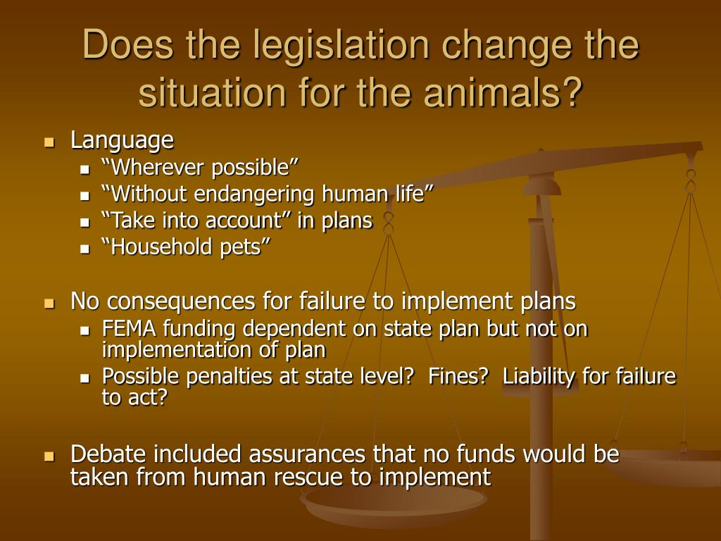 Does the legislation change the situation for the animals?