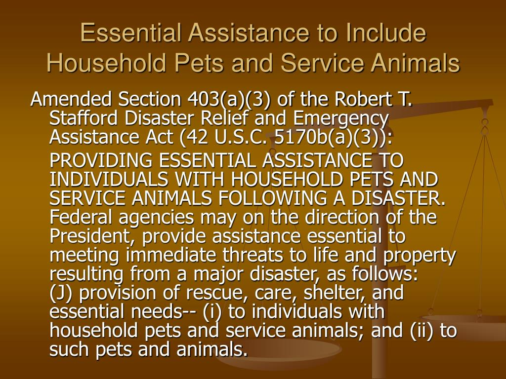 Essential Assistance to Include Household Pets and Service Animals