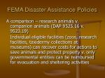 fema disaster assistance policies
