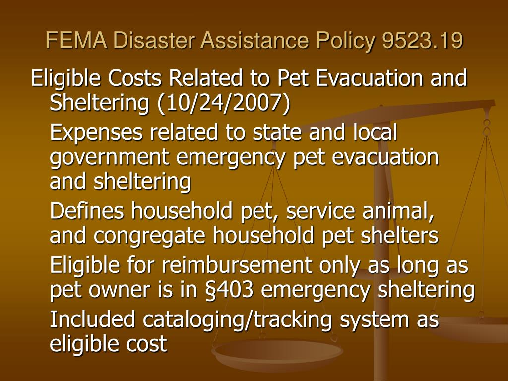 FEMA Disaster Assistance Policy 9523.19
