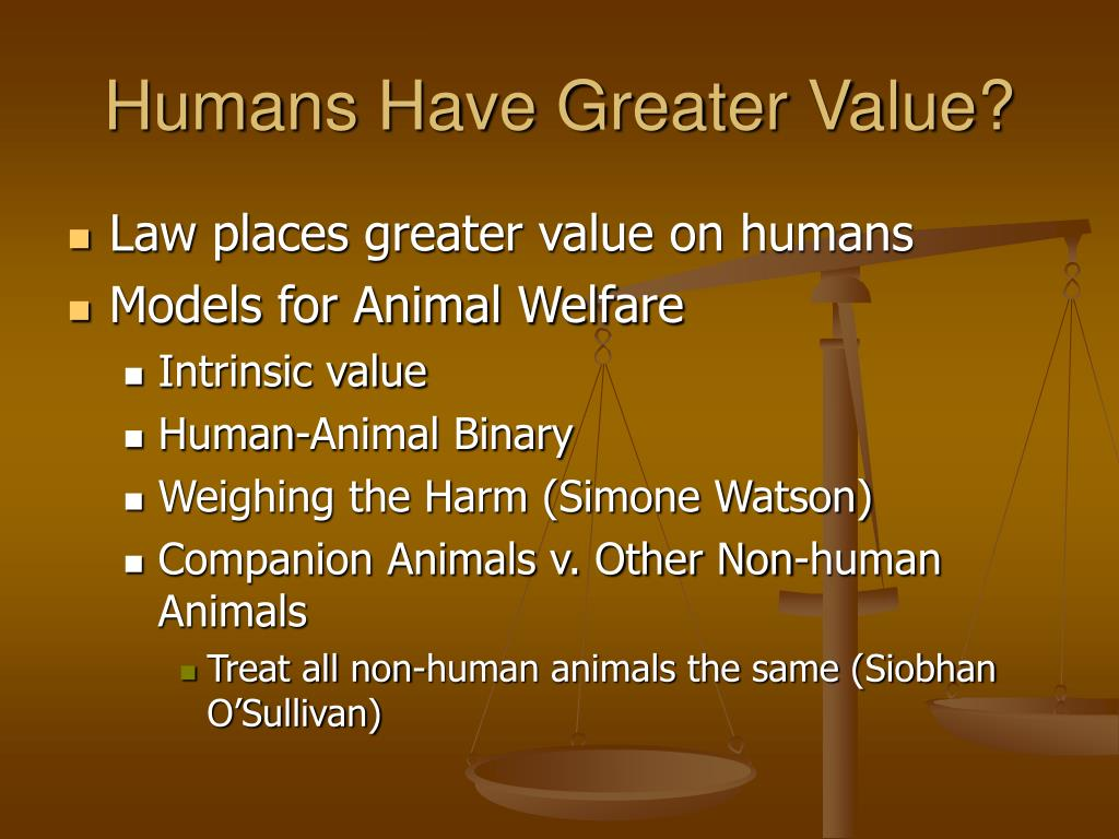 Humans Have Greater Value?