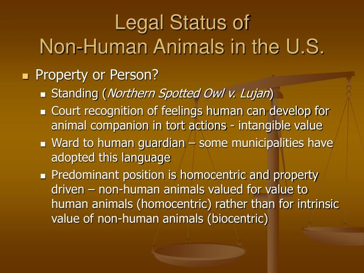 Legal status of non human animals in the u s