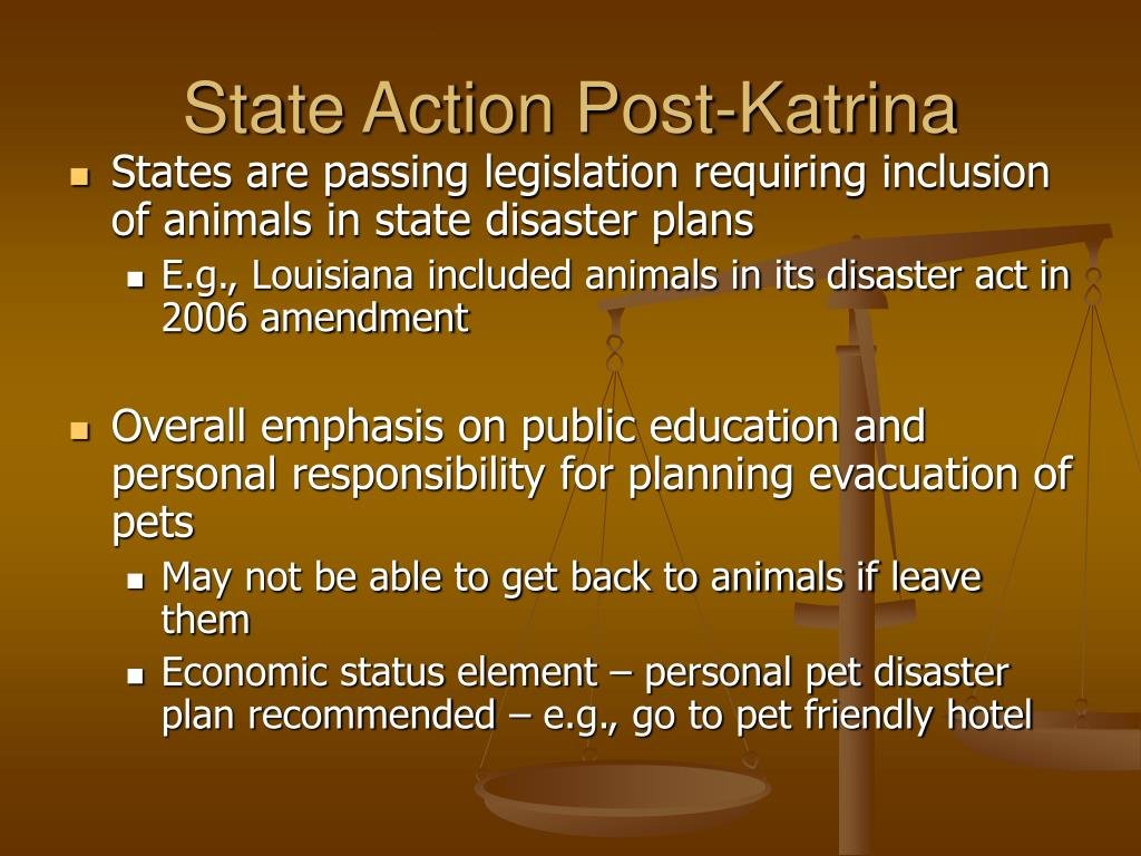 State Action Post-Katrina