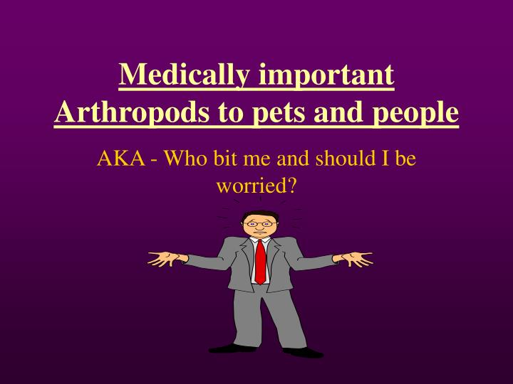 Medically important arthropods to pets and people