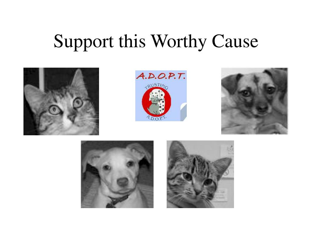 Support this Worthy Cause