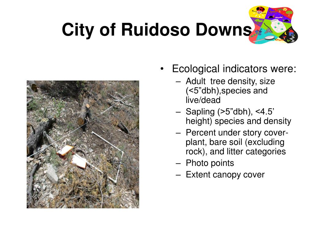 City of Ruidoso Downs