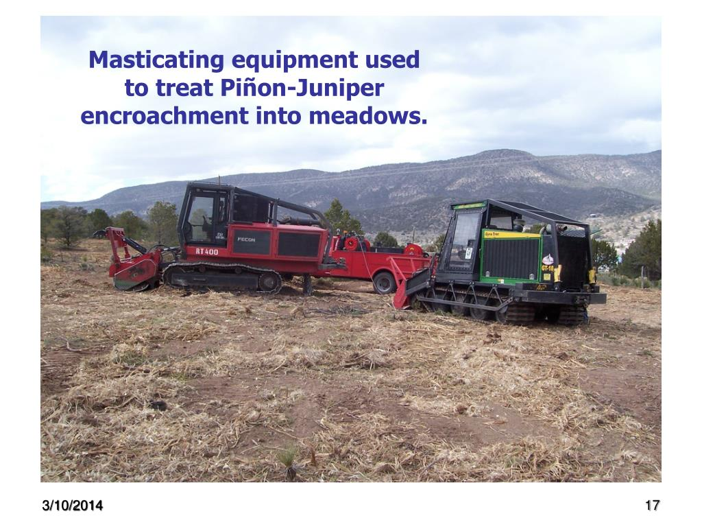 Masticating equipment used to treat Piñon-Juniper encroachment into meadows.