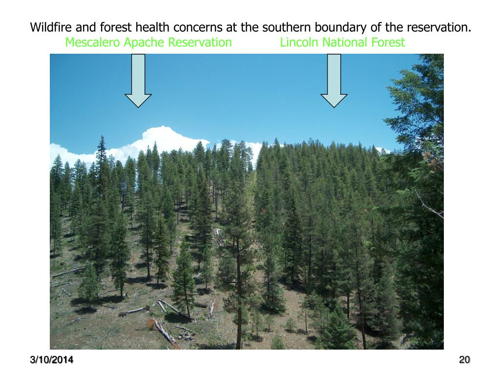 Wildfire and forest health concerns at the southern boundary of the reservation.