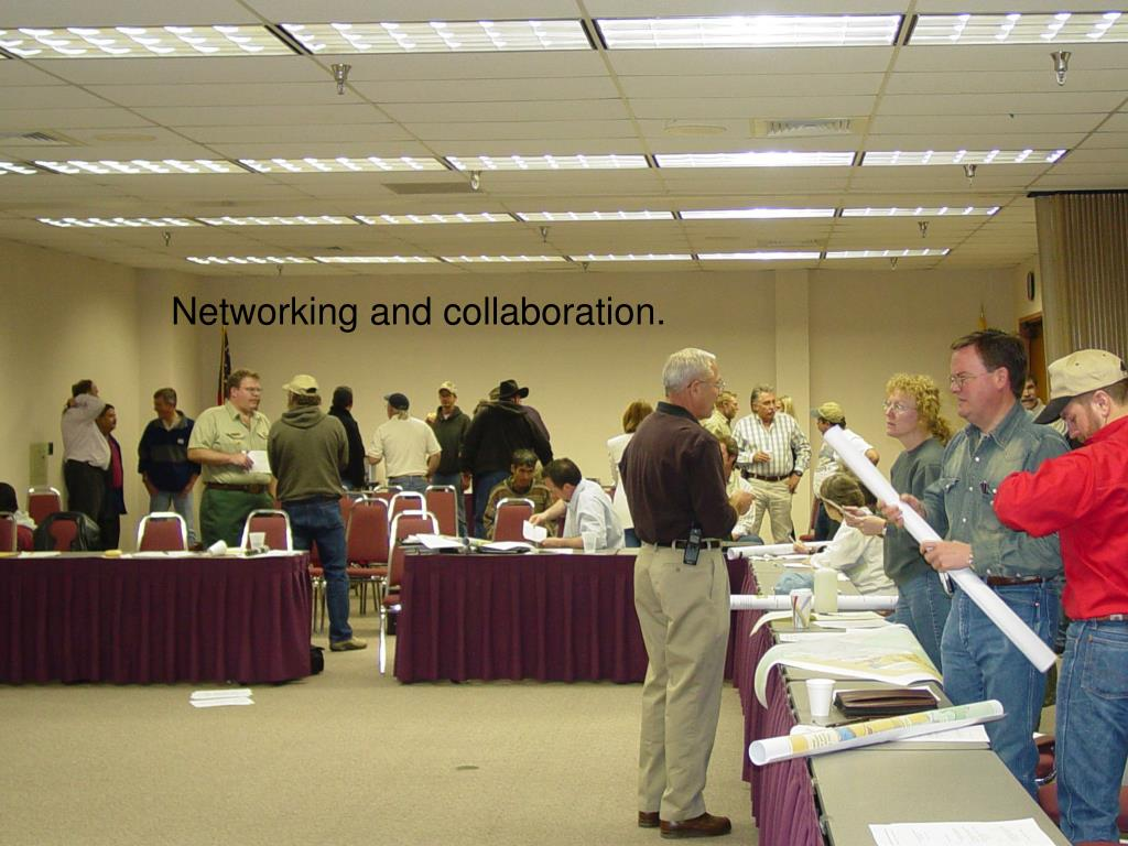 Networking and collaboration.