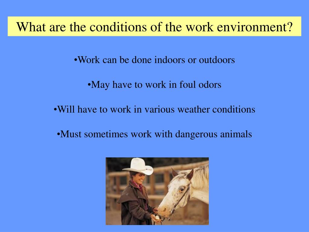 What are the conditions of the work environment?