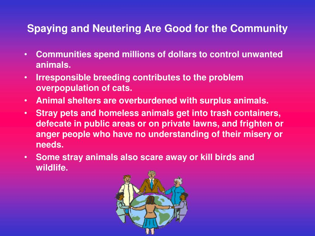 Spaying and Neutering Are Good for the Community