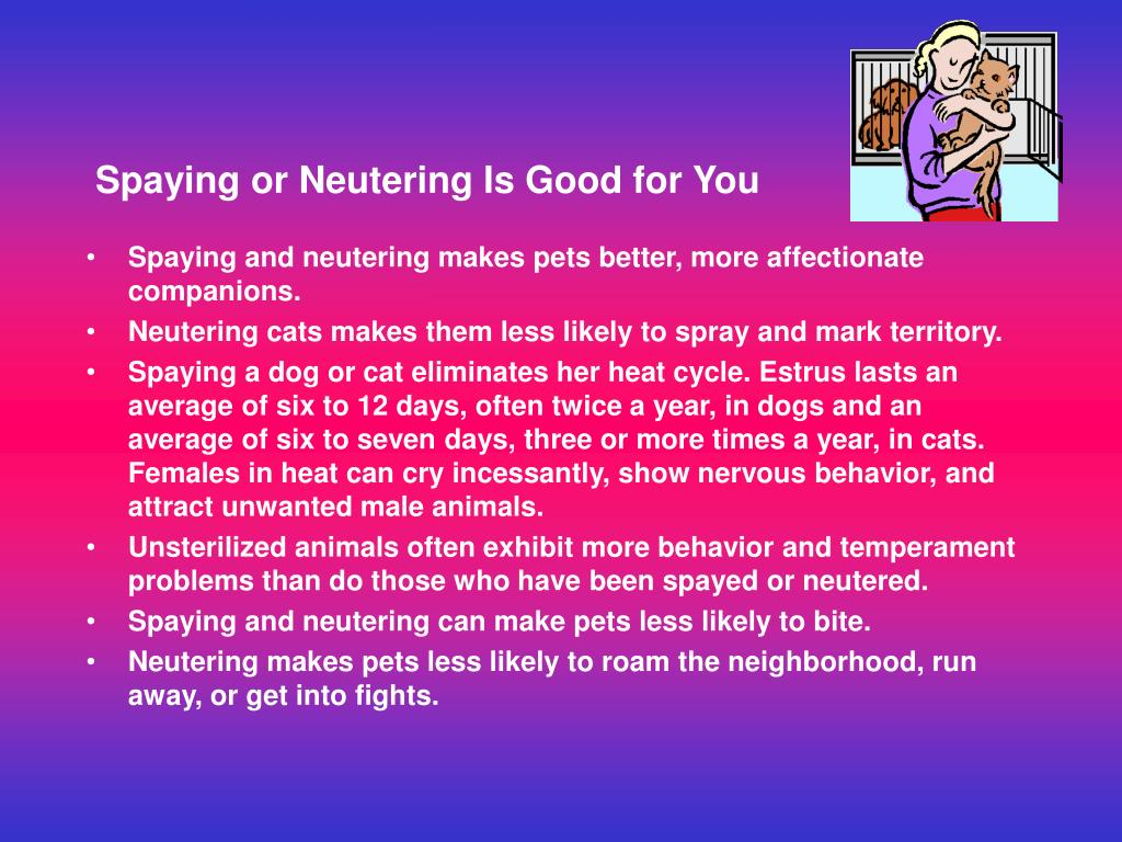 Spaying or Neutering Is Good for You