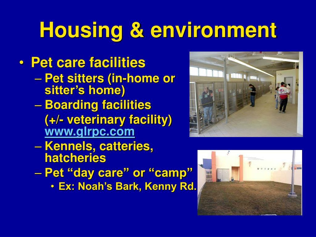 Housing & environment