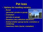 pet loss29