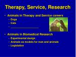 therapy service research