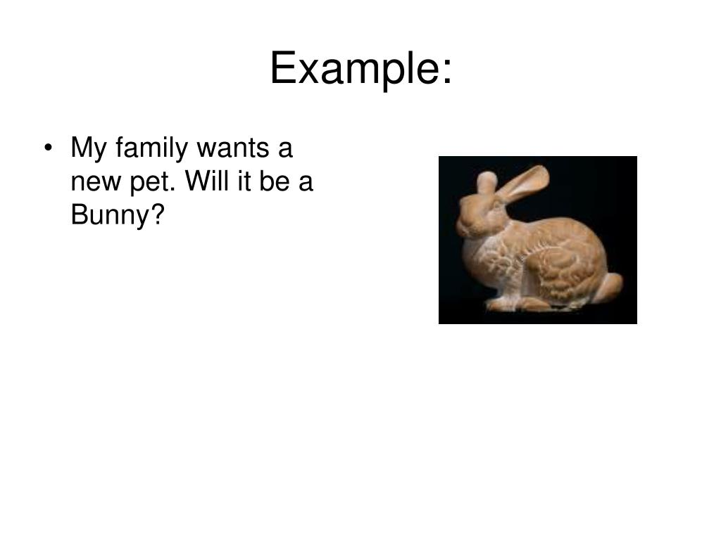 My family wants a new pet. Will it be a Bunny?