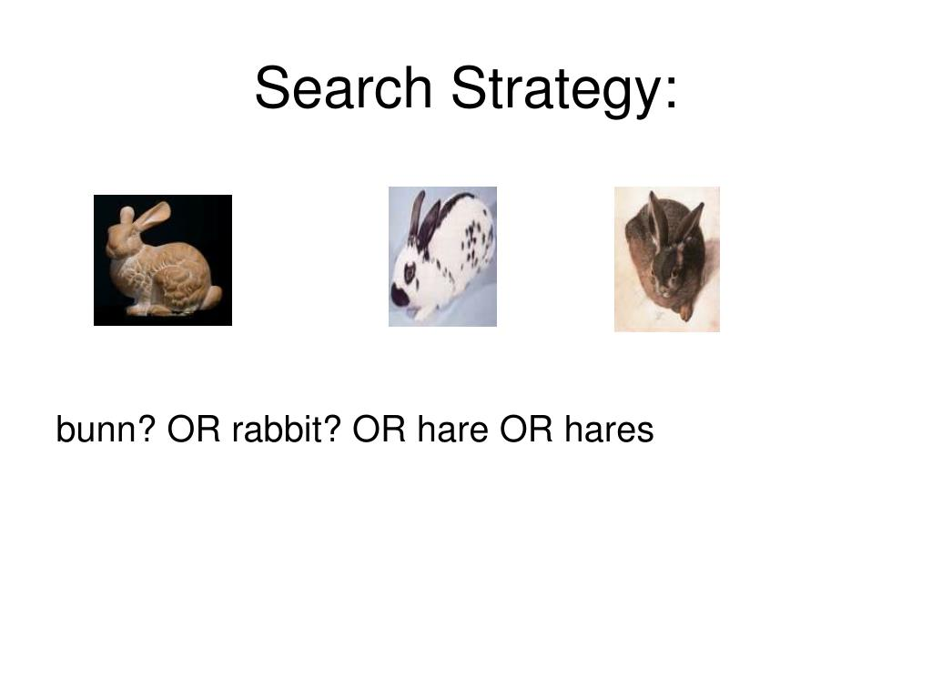 Search Strategy: