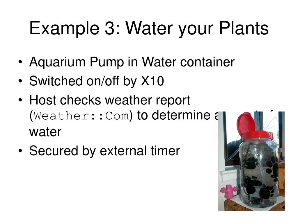 Example 3: Water your Plants