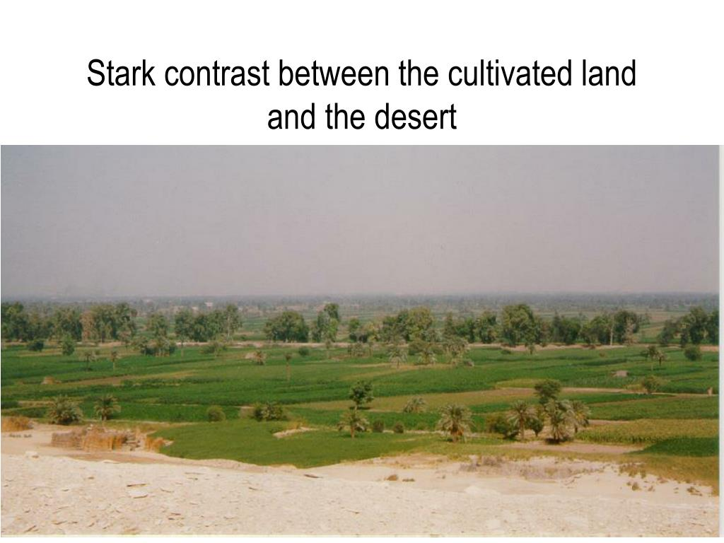 Stark contrast between the cultivated land and the desert