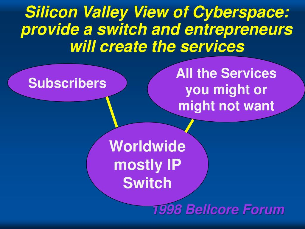 Silicon Valley View of Cyberspace: provide a switch and entrepreneurs will create the services