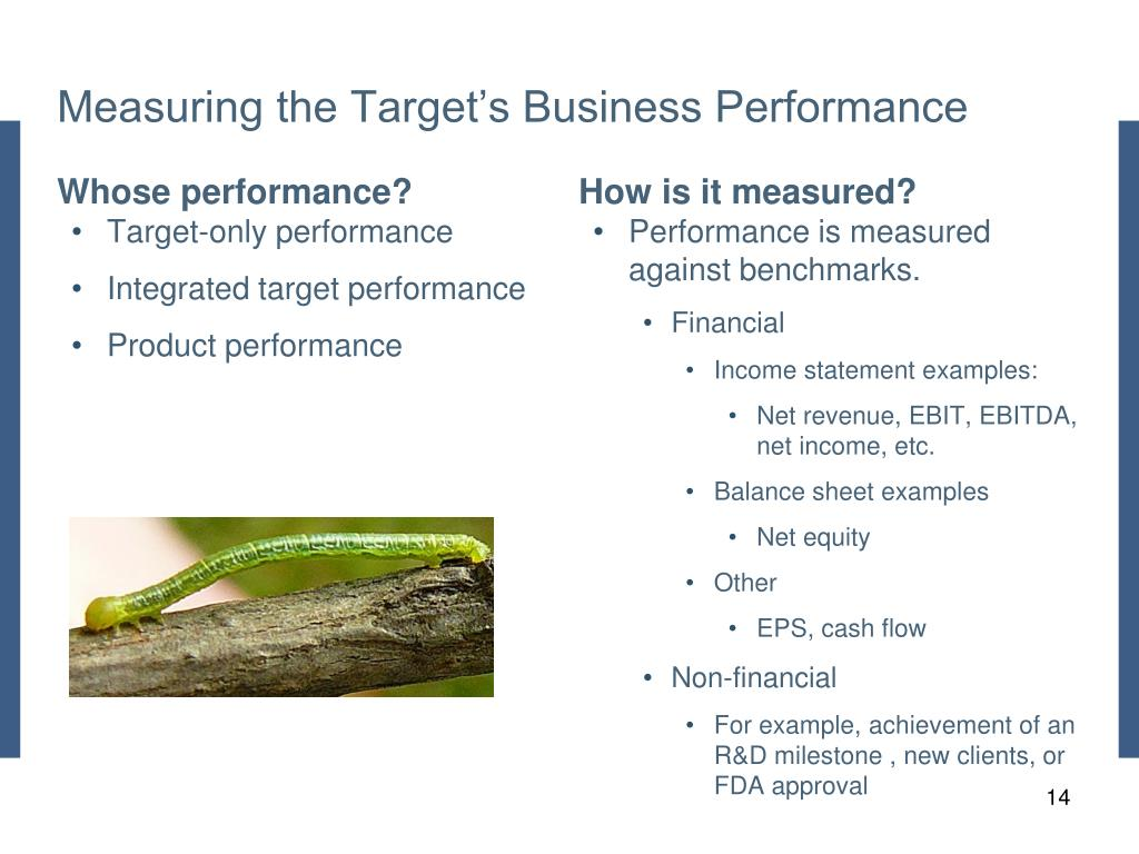 Measuring the Target's Business Performance