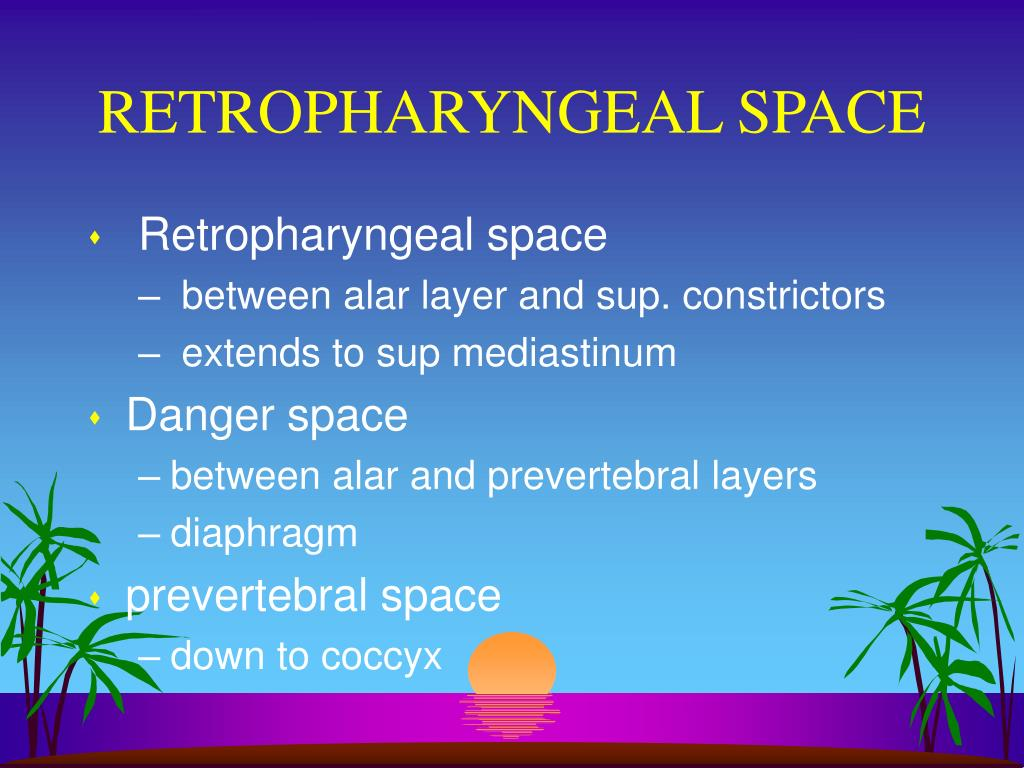 RETROPHARYNGEAL SPACE