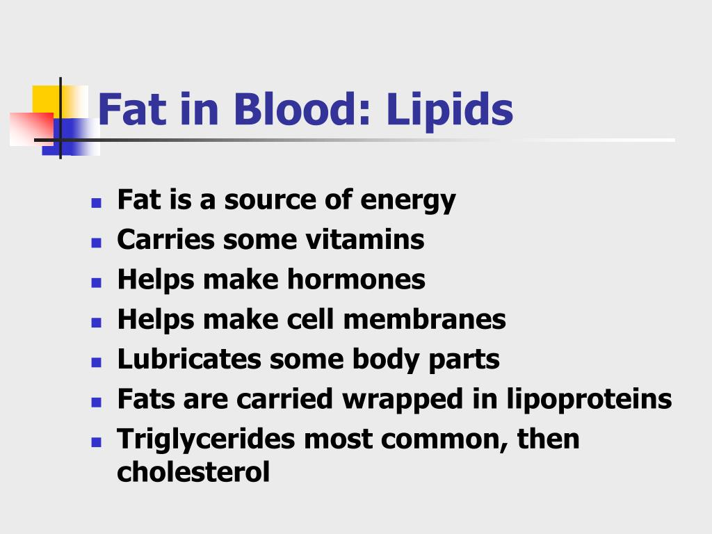 Fat in Blood: Lipids