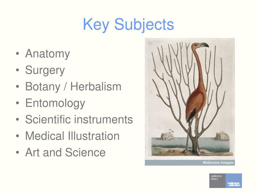 Key Subjects