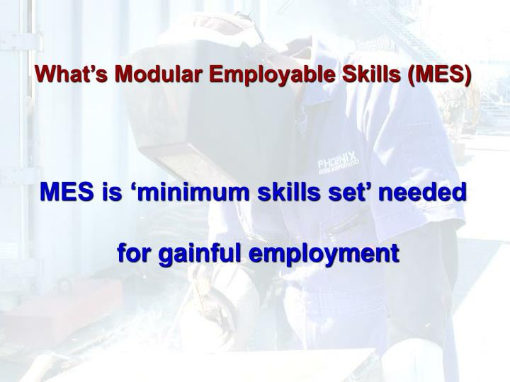 What's Modular Employable Skills (MES)