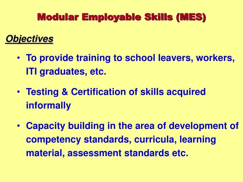 Modular Employable Skills (MES)
