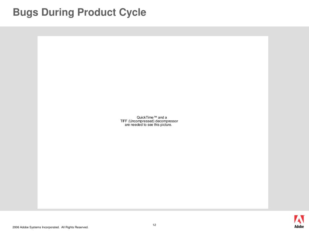 Bugs During Product Cycle