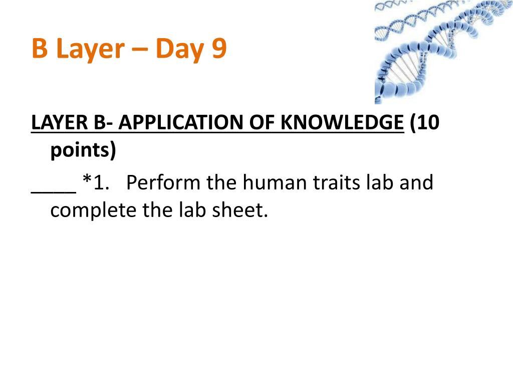 B Layer – Day 9