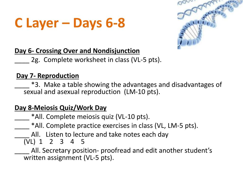 C Layer – Days 6-8