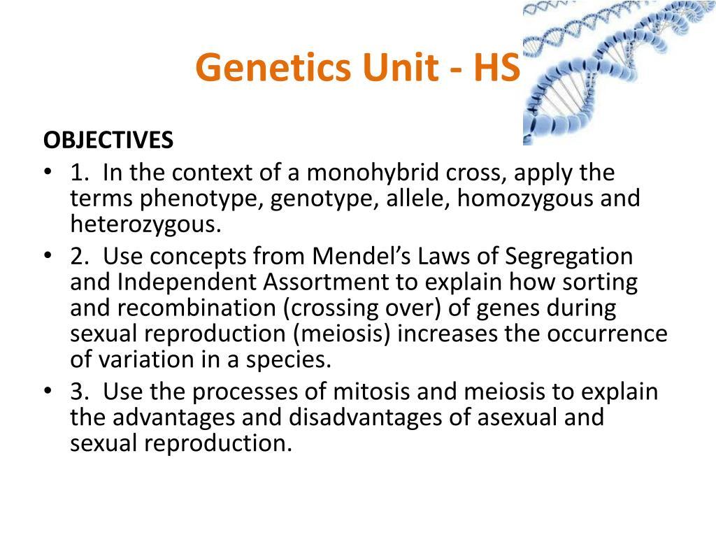 Genetics Unit - HS