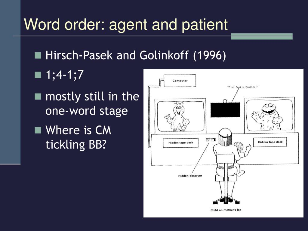 Hirsch-Pasek and Golinkoff (1996)