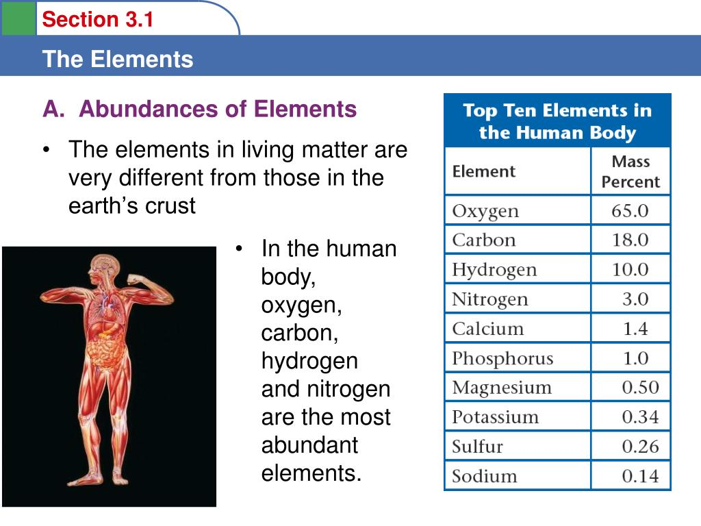A.  Abundances of Elements