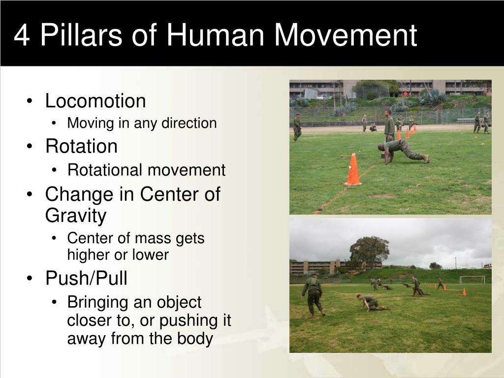 4 Pillars of Human Movement