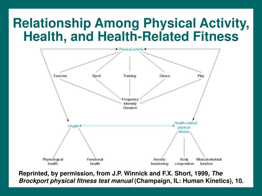 Relationship Among Physical Activity, Health, and Health-Related Fitness