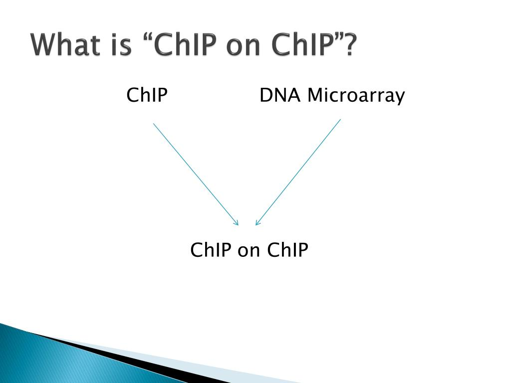 "What is ""ChIP on ChIP""?"