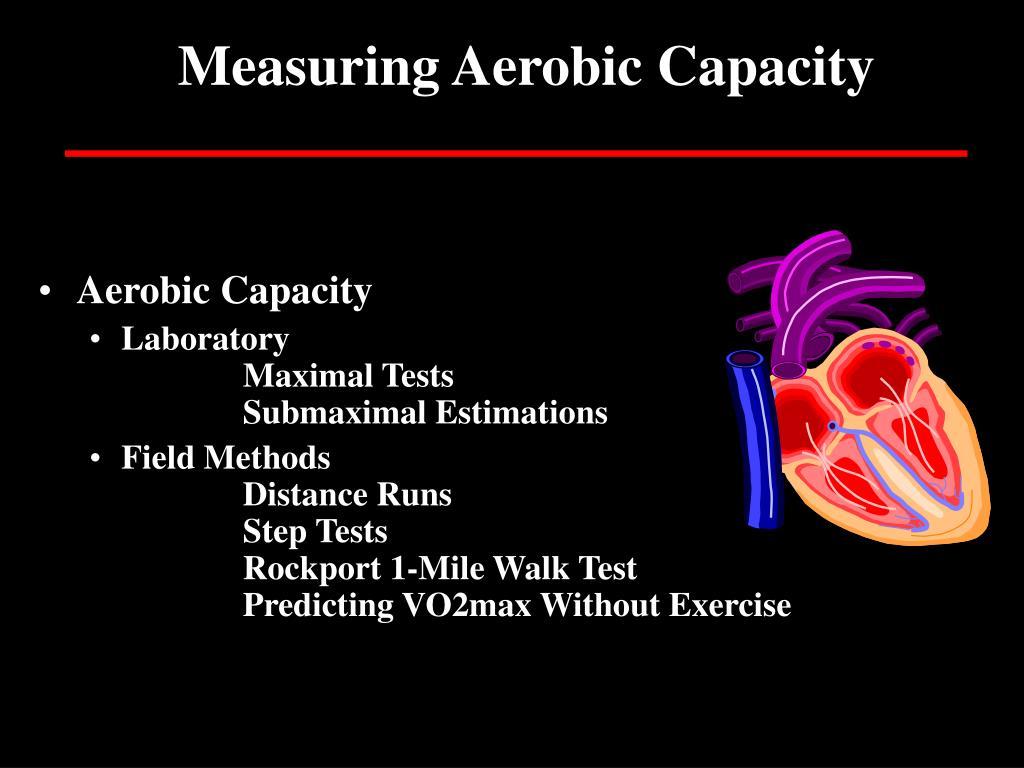 Measuring Aerobic Capacity