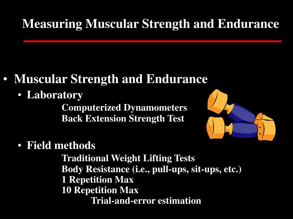Measuring Muscular Strength and Endurance