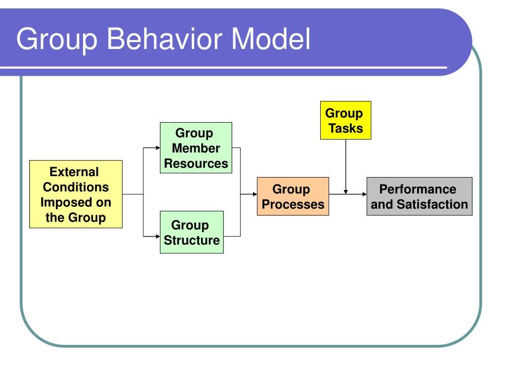 Group Behavior Model