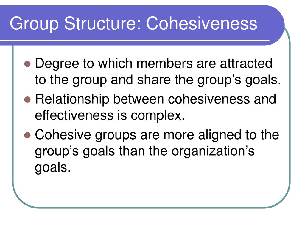 Group Structure: Cohesiveness