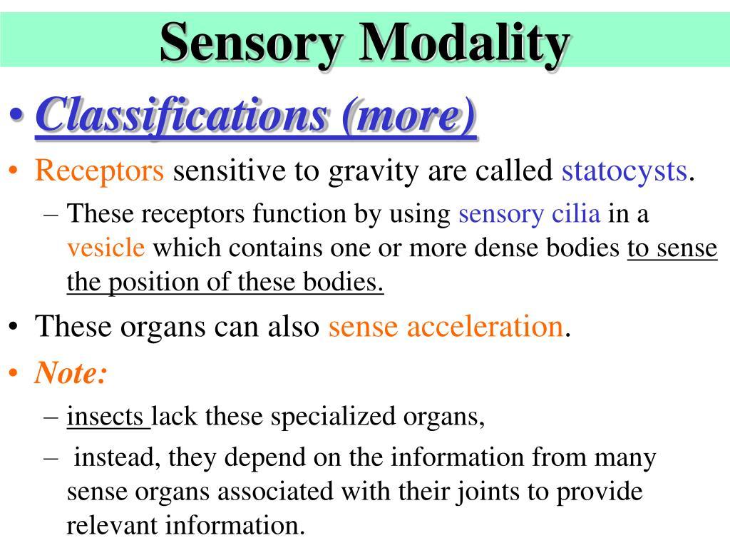 Sensory Modality