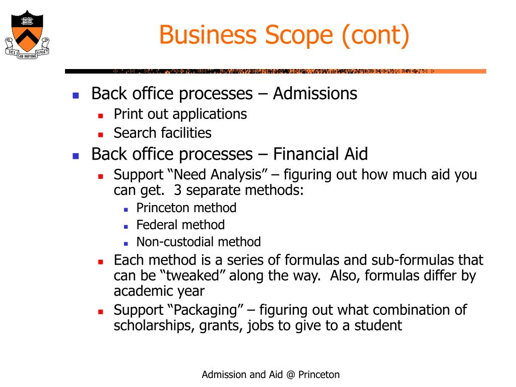 Business Scope (cont)