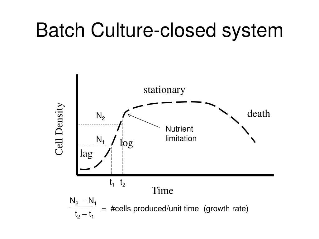 Batch Culture-closed system