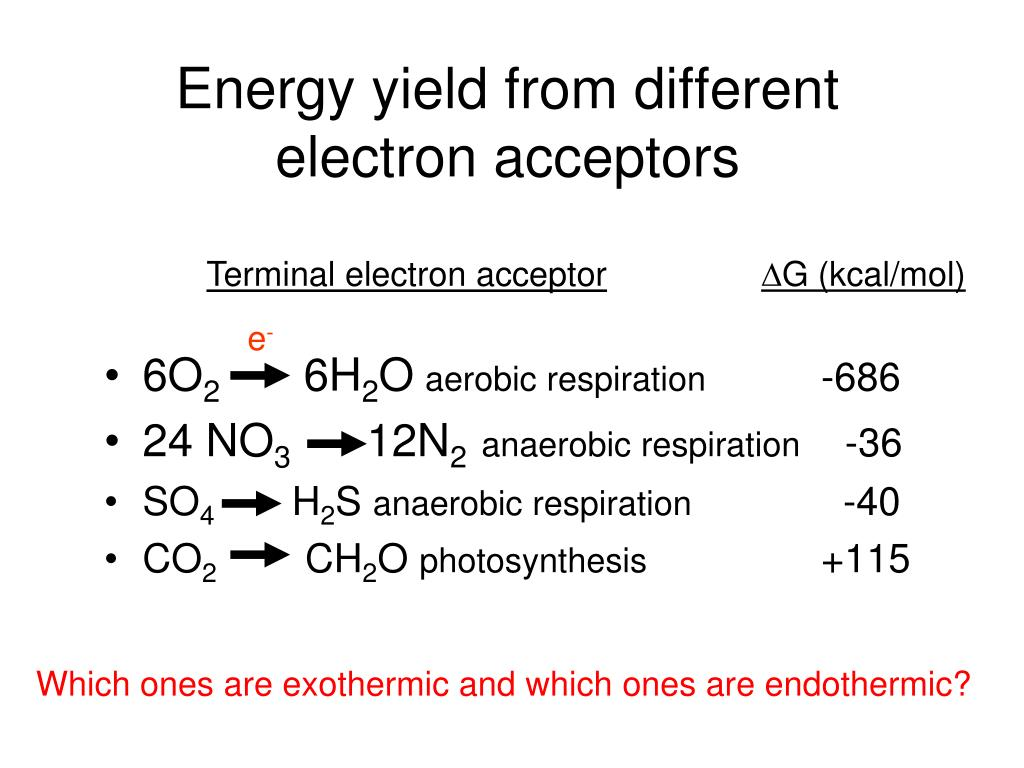 Energy yield from different electron acceptors